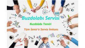 İzmir Buzdolabı Servisi