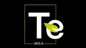 Te Mola