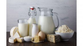 İzmir Günlük Süt – Ezine – Biçiftçi