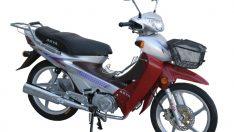 MERKEZ MOTOR